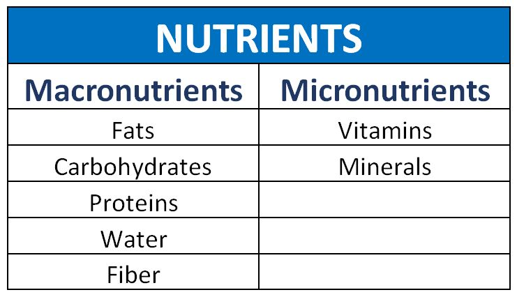 what are nutrients? | crfitness, Cephalic Vein